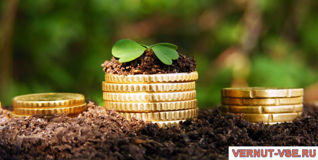 Монеты на земле