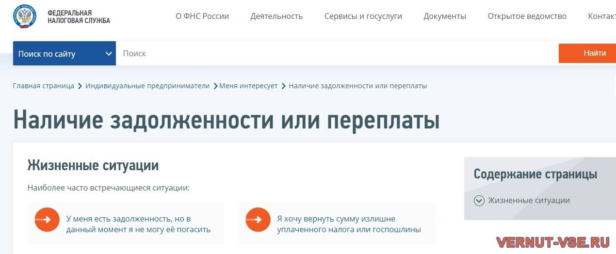 Страница проверки наличия задолженности на сайте ФНС